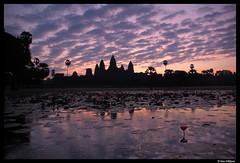 The glory of Angkor Wat (Dan Wiklund) Tags: reflection nature silhouette sunrise temple pond cambodia angkorwat 2006 d200 angkor ankorwat 50v5f cotcbestof2006 frhwofavs flickrelite lpiconic