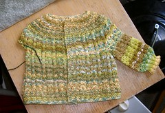 Feb Baby Sweater, Spring