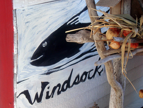 windsock-fish