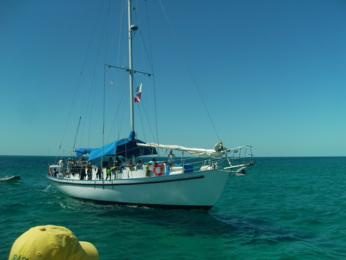 ocean cruise diving bahamas nassau cay exuma morningstar blackbeard liveaboard cays blackbeards 20101017