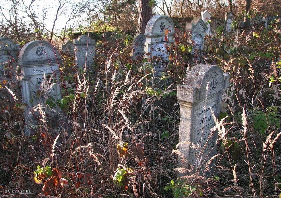 jewish cemetery 1, eastern Slovakia