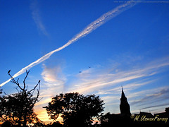 Evening in GC (Usman Farooq) Tags: trees pakistan tower college birds silhouette clouds university lahore gc gcu ravian governmentcollege gculahore governmentcollegeuniversitylahore governmentcollegeuniversity geo:lat=3156 gcuniversity governmentcollegelahore gclahore ravians geo:lon=743