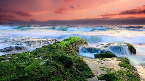 [フリー画像] 自然・風景, 海, 海岸, 夕日・夕焼け・日没, オーストラリア, 201011020700