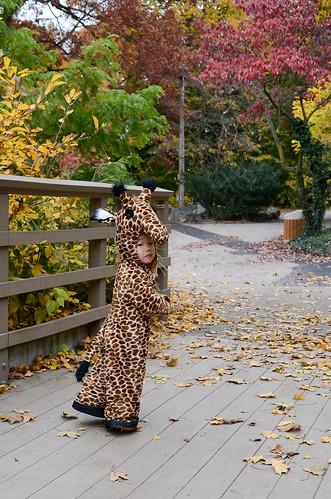 halloween-zoo-portraits-13