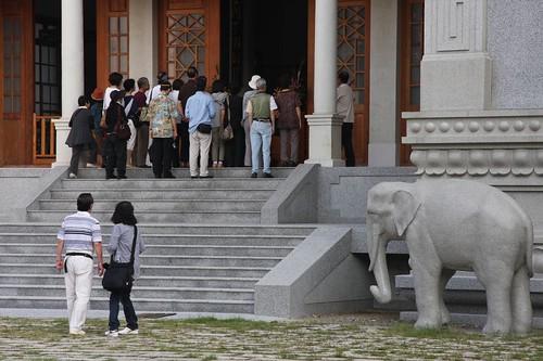 象もお出迎えです