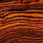 Cocobolo  Janka Rating: 1136