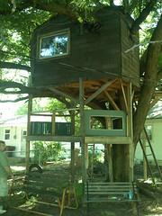 treehouse - 17.jpg