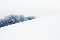 Sin mas... (arbioi) Tags: naturaleza snow blanco nieve bosque montaña calma frio euskalherria navarra nafarroa baztan eugi enekorri zagua