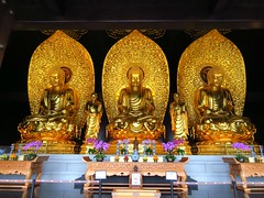 Grand Buddha Hall 大雄寶殿, Tszshan Monastery 慈山寺, Tai Po Market 大埔墟, New Territories, Hong Kong (Snuffy) Tags: hongkong placesofworship newterritories 大雄寶殿 taipomarket amitabhabuddha 釋迦牟尼佛 sakyamunibuddha 大埔墟 bhaisajyagurubuddha 慈山寺 tszshanmonastery grandbuddhahall 東方藥師佛 西方阿彌陀佛