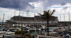 A busy time on Funchal Marina (alsimages1 - Thank you for 860.000 PAGE VIEWS) Tags: sky music cloud sun mountain mountains rock walking landscape dance fishing apartments sailing outdoor song taxi hill scenic warmth peak folklore cliffs formation views heat hotels funchal landscaper levadas