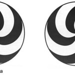 "11 <a style=""margin-left:10px; font-size:0.8em;"" href=""http://www.flickr.com/photos/138202118@N04/24181369004/"" target=""_blank"">@flickr</a>"