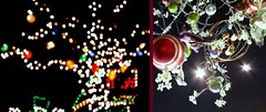 Life is like a landscape. You live in the midst of it but can describe it only from the vantage point of distance. (fotogirl MK) Tags: vacation house black blur night yard lights md poem december bokeh christmaslights itsbeenawhile