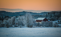 """""""There's just something in these rural landscapes that has me spellbound, again and again."""" (cablefreak) Tags: winter rural lumix frost sweden dingle panasonic munkedal fz1000"""