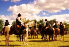 Bonaereses de Zarate (Eduardo Amorim) Tags: horses horse southamerica argentina criollo caballo cheval caballos cavalos pferde cavalli cavallo cavalo gauchos pferd chevaux gaucho cavall  amricadosul gacho amriquedusud provinciadebuenosaires  gachos  sudamrica sanantoniodeareco suramrica amricadelsur areco sdamerika crioulo caballoscriollos criollos  americadelsud crioulos cavalocrioulo americameridionale caballocriollo eduardoamorim cavaloscrioulos