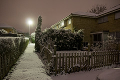 Snowy Alley (Aaron J Barber) Tags: uk longexposure light snow tree night garden alley estate cloudy streetlamp path pollution hedge housing culdesac terraced fench