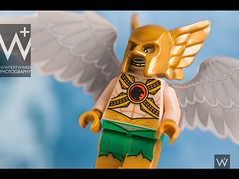 Hawkman (: : w i n t e r t w i n e d : :) Tags: travel blue red portrait white chicago black macro green art closeup night comics photography 50mm hall fly dc kent nikon allen close lego princess awesome bruce wayne flash bob sigma mini super superman jordan diana xmen wonderwoman squareformat clark barry superhero batman comicbooks carter hal superheroes powers cyborg hackman martian clarinet avengers villalobos minifigure brucewayne 2016 martianmanhunter haljordan manhunter d90 carterhall adcc mavel wintertwined instagramapp