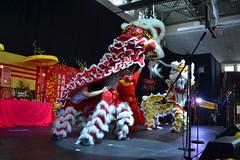 2016-01-31 Montreal Tet Lunar New Year Festival