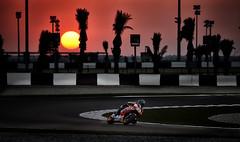 Marc Mrquez. Test Catar MotoGP 2016. Foto va Honda Racing Corporation. (Box Repsol) Tags: test motogp catar 2016 marcmrquez