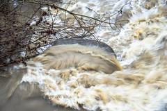 RIVER / FIUME (MY SECRET WINDOW) Tags: tree primavera rain stone alberi river waterfall outdoor fiume drop full foam sketches sassi acqua autunno pioggia calma piena paesaggio offspring dribble cascata schiuma artificiale allaperto schizzi goccie