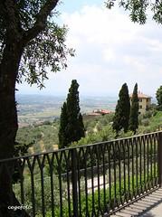 ...Bella vista... (cegefoto) Tags: italy fence view dal valley tuscany uitzicht toscane cypresses italie hekwerk hff cypressen happyfridayfence