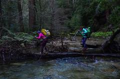 North Fork of the Little Sur River, Ventana Wilderness (Tinfoil Hat) Tags: river bigsur adventure backpacking backcountry rivercrossing littlesurriver ventanawilderness