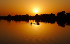 Gold evening (Teseum) Tags: africa sunset sun reflection river gold evening guinea fisherman sailing canoe rowing pirogue bissau guinée guineabissau bafata guineebissau