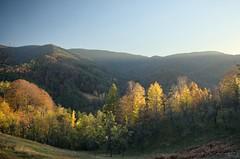 Autumn Colors (shot37) Tags: autumn trees mountain colors yellow forest landscape photography nikon colours photographer view hill serbia hills valley suma srbija brdo shot37 jesen sumadija planina pejsaz pejzaz d700 nikond700 nikonsrbija brezna nikonserbia