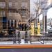 087 meerkat amsterdam window 10