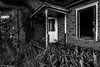 Decomposing America #41 (PJ Resnick) Tags: street wood morning windows urban blackandwhite black building brick green texture abandoned window kitchen monochrome leaves yellow architecture backlight barn contrast trash sunrise canon grey blackwhite leaf paint outdoor antique decay farm urbandecay gray neglected streetphotography atmosphere monochromatic structure americana weathered discarded b7w peelingpaint winfield decayed chicagoland resnick decomposing dupagecounty canonef1740mmf4l winfieldil innamoramento impressedbeauty oldandbeautiful dupagecountyil 5dmarkii canon5dmarkii eos5dmarkll pjresnick pjresnickgmailcom decomposingamerica perryjresnick ©pjresnick