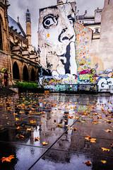 Urban Art, Paris, 2015 (KSWest) Tags: travel urban paris france reflection art fall wet rain photoshop landscape cityscape rainy fra lightroom on1 kswest stevenwest copyright2015 stevewest