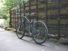 P1010947 (wataru.takei) Tags: bike japan mountainbike mtb epo canfieldbrothers lumixg20f17