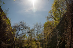 20160424-_IGP6607 (STC4blues) Tags: jerseycity flare bergenarches eriecut