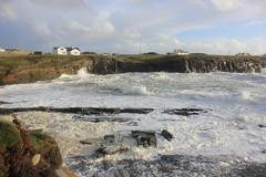 IMG_8367 (DaveGifford) Tags: ireland spanishpoint wildatlanticway