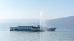 Incidental damages... (Lionoche) Tags: cruise ship fribourg navigation bteau lacdeneuchtel cudrefin