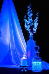 Still Life in Blacklight (Repp1) Tags: flowers blue stilllife fleurs candle bleu blacklight vase bougie naturemorte sheerfabric lumirenoire topphotography tissutransparent