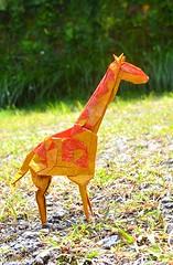 Spotted Giraffe (alfantoutanaya39) Tags: art animal john paper origami outdoor diagram giraffe montroll
