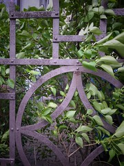 Happy Fence Friday! (suzanne.gibson) Tags: green leaves fence munich iron