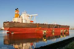 Dalian Venture (maritime.fotos) Tags: reflections rotterdam dalian tanker oiltanker crudeoil landtong vlcc calandkanaal crudeoiltanker noordzeeweg landtongrozenburg ltanker rohltanker dalianventure