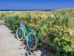 Cruiser (johnemount) Tags: ocean beach bike bicycle asburypark asbury cruiser beachgrass beachcruiser