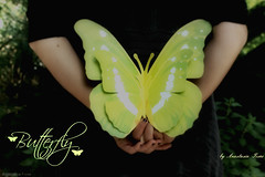Miss Butterfly -  ( ! busy bee) Tags: nature hands paperbutterfly