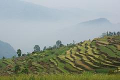 Ratankot Landscape 2016 (Ivo De Decker back from holiday) Tags: nepal mountains landscape asia terraces valley riceterraces ratankot nepallandscape