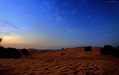 Il the nel deserto (giovannispina31) Tags: sunset wild clouds landscape twilight sand dubai tramonto desert dusk afterglow the