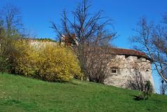 Nagy Rondella (Pter_kekora.blogspot.com) Tags: castle nikon hungary budapest medieval barbican buda castlehill budaivr budacastle d60 2016 vrhegy rondella kingdomofhungary rondellanagy rondellagreat magyarkirlysg
