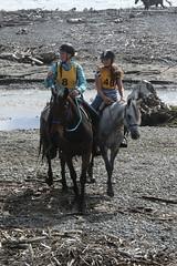 IMG_EOS 7D Mark II201604030595 (David F-I) Tags: horse equestrian horseback horseriding trailriding trailride ctr tehapua watrc wellingtonareatrailridingclub competitivetrailriding sporthorse equestriansport competitivetrailride april2016 tehapua2016 tehapuaapril2016 watrctehapuaapril2016