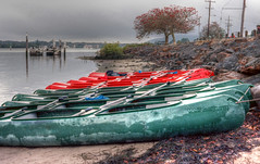 Beached Canoes (cupitt1) Tags: dismal rainy canoes miserable portstephens teagardens myalllakes