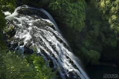 waterfall (RenField - Toel-ul Laputa) Tags: green art nature japan forest 50mm waterfall nikon kagoshima     jpn kyusyu    aira    sgima  d800e