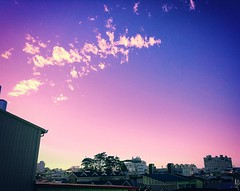 Color sky When tired, look up in the sky, find your favorite place to relax. /  / (ccps2266ivan) Tags: camera city blue sky sun color building tree love beautiful sunshine clouds square flickr niceshot afternoon play taiwan squareformat build     iphone pingtung       beautifulpicture  colorinourworld iphoneography instagramapp xproii iphone6s iphone6splus