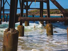 (nataliepho) Tags: ocean travel beach nature water landscape australia nsw centralcoast catherinehillbay