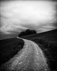 .S. (Paucal) Tags: road leica france clouds montagne alpes walk dramatic pluie s again mm monochrom nuages foret tempete randonne summicron35