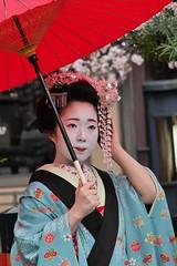 (nobuflickr) Tags: japan kyoto maiko geiko        gionkoubu  20160401p1040565